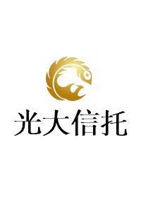 光大信托-桂盛4号柳州