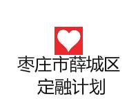 山东枣庄市薛城区定融亚搏app(风险评估报告)