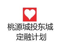 湖南常德桃源县东城债权一号(风险评估报告)