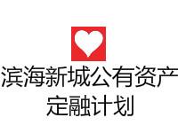 滨海新城公有资产2020年债权2号