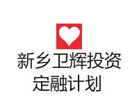2020新乡卫辉投资集团资产一号