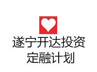 遂宁开达投资2020债权资产(风险评估报告)