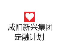 陕西咸阳市政债权转让计划(风险评估报告)