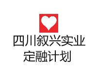 四川泸州叙兴实业集团有限公司2020直接融资项目