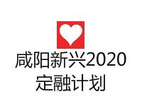 咸阳新兴2021应收账款收益权