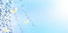 【城投大全—湖州市】浙江湖州市城投债务统计(附:盐城63家城投名单)