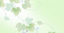 央企信托-258号青岛AA+政信