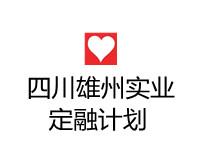 四川雄州实业有限责任公司2021直接融资项目